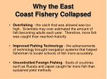 why the east coast fishery collapsed1