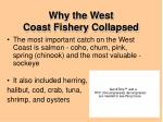 why the west coast fishery collapsed