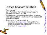 strep characteristics