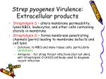strep pyogenes virulence extracellular products