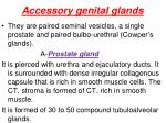 accessory genital glands