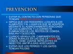 prevencion1