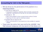 accounting for cas in the tam panel