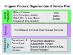 program process organizational service plan