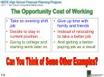 the opportunity cost of working