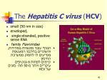 the hepatitis c virus hcv