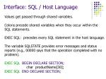 interface sql host language