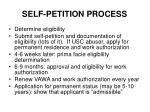 self petition process
