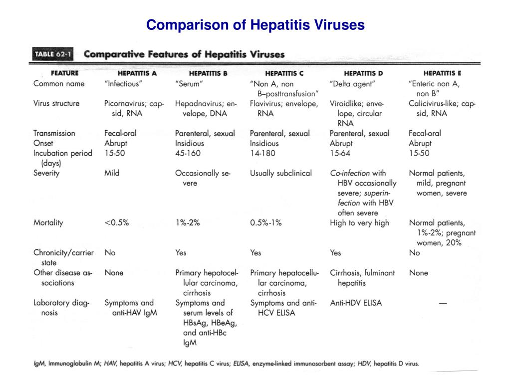 Comparison of Hepatitis Viruses