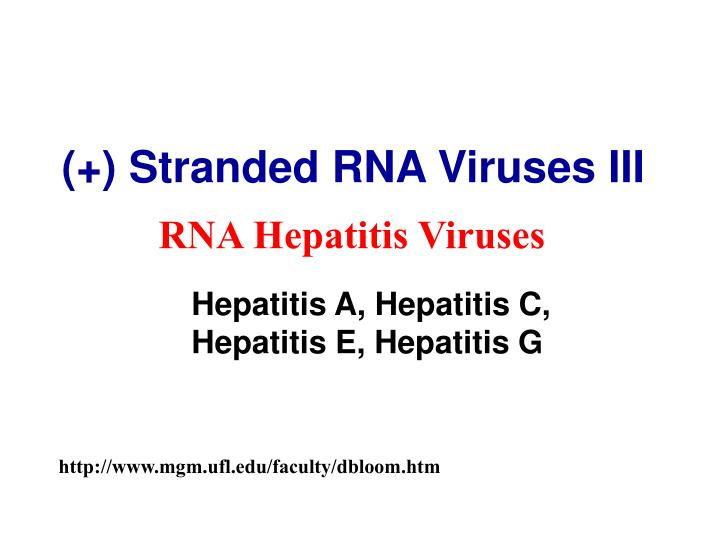 Stranded rna viruses iii