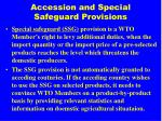 accession and special safeguard provisions