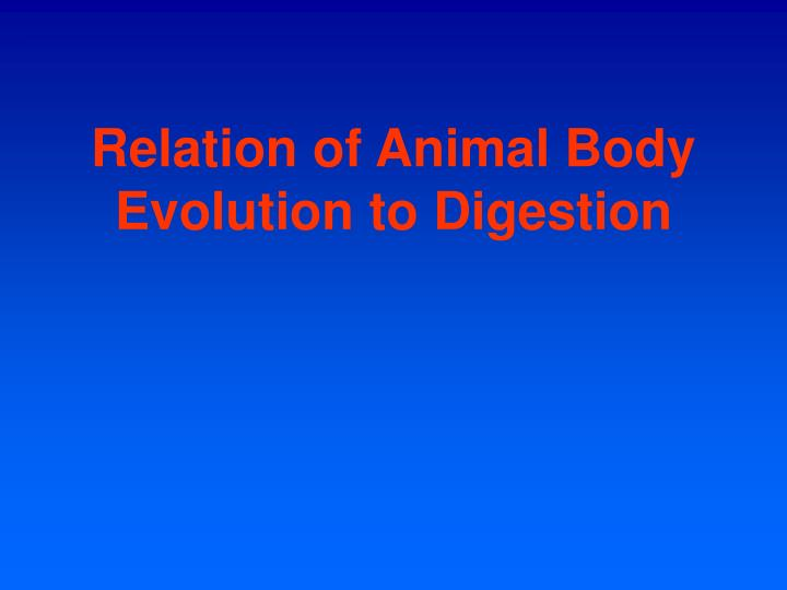 Relation of Animal Body Evolution to Digestion