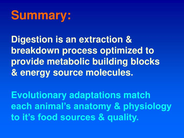 Digestion is an extraction & breakdown process optimized to provide metabolic building blocks & energy source molecules.