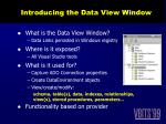introducing the data view window