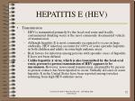 hepatitis e hev72