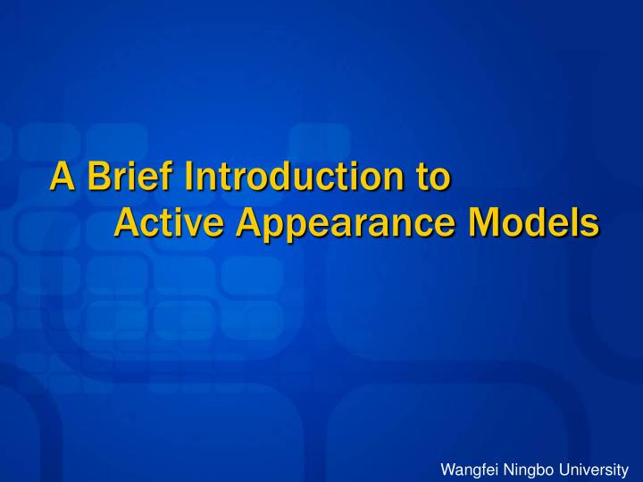 a brief introduction to active appearance models n.