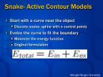 snake active contour models