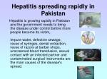 hepatitis spreading rapidly in pakistan