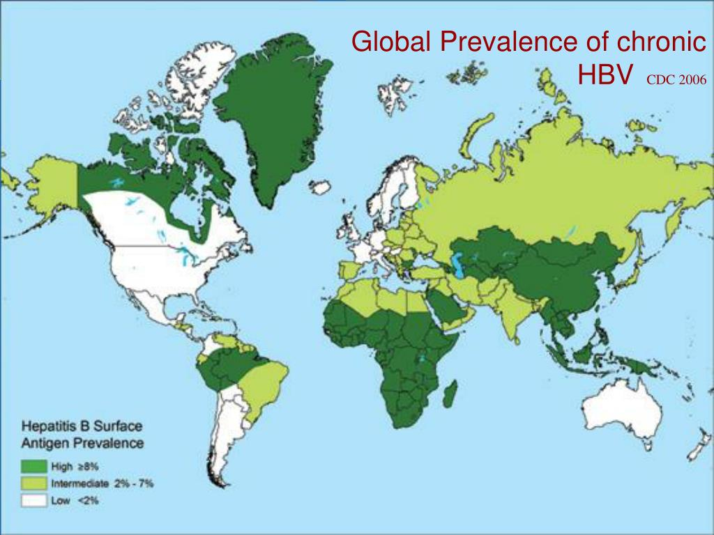 Global Prevalence of chronic  HBV