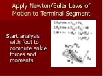 apply newton euler laws of motion to terminal segment