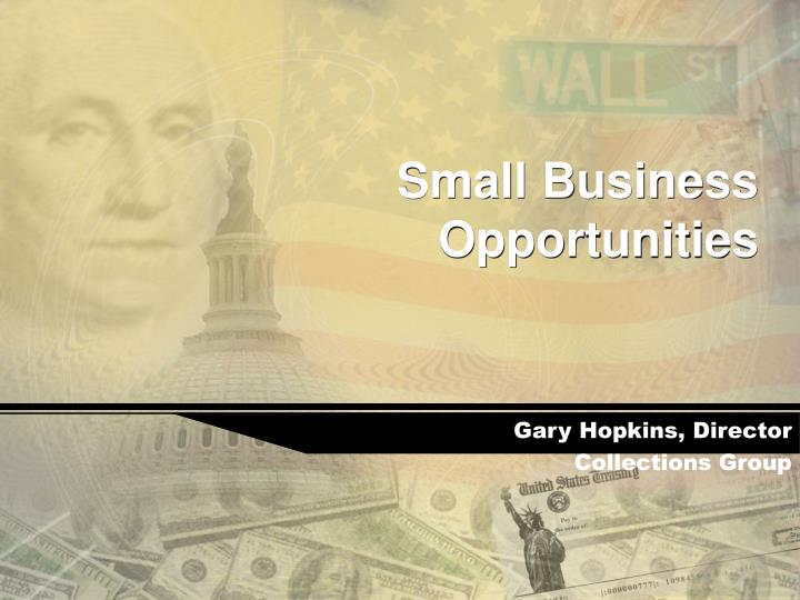 small business opportunities n.