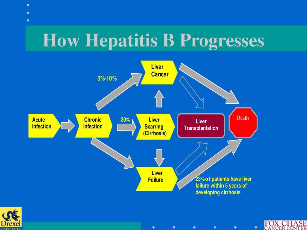 How Hepatitis B Progresses