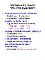 differences among spoken languages