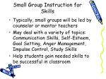 small group instruction for skills
