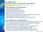 the digital self social economic and political implications
