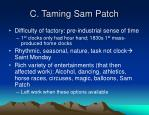 c taming sam patch