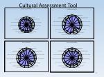 cultural assessment tool