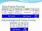 data frame format