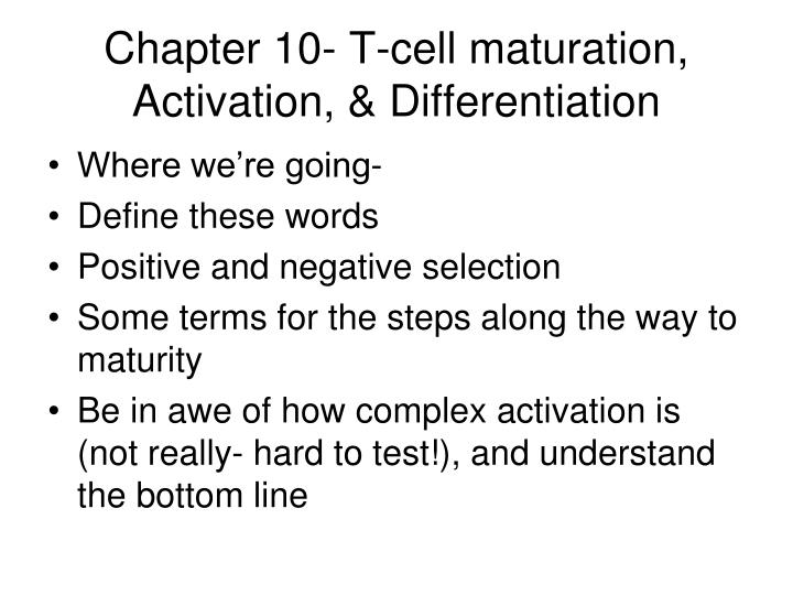 chapter 10 t cell maturation activation differentiation n.