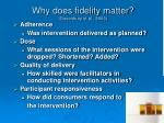 why does fidelity matter dusenbury et al 2003