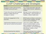 cusp challenges and strategies