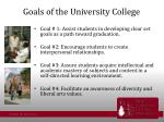 goals of the university college