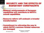security and the effects of budgetary constraints2