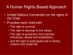 a human rights based approach1