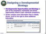 designing a developmental strategy