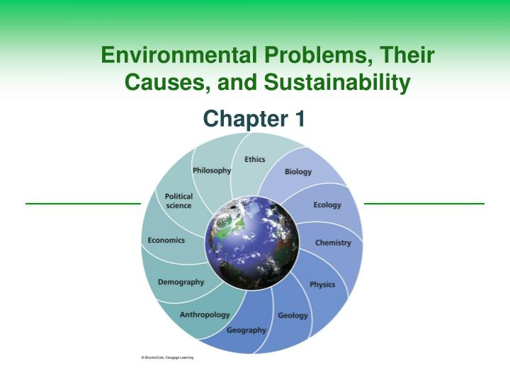 causes of environmental problems essay