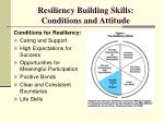resiliency building skills conditions and attitude