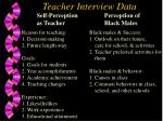 teacher interview data