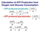 calculation of atp production from oxygen and glucose consumption