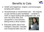 benefits to cats