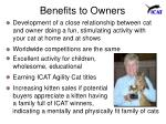 benefits to owners