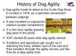 history of dog agility
