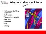 why do students look for a job