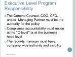 executive level program responsibility