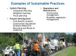 examples of sustainable practices