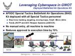 leveraging cyberspace in gwot deployed battlefield air operations kit